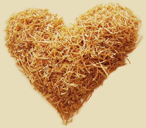 drevorezba zo srdca - piliny rezbára
